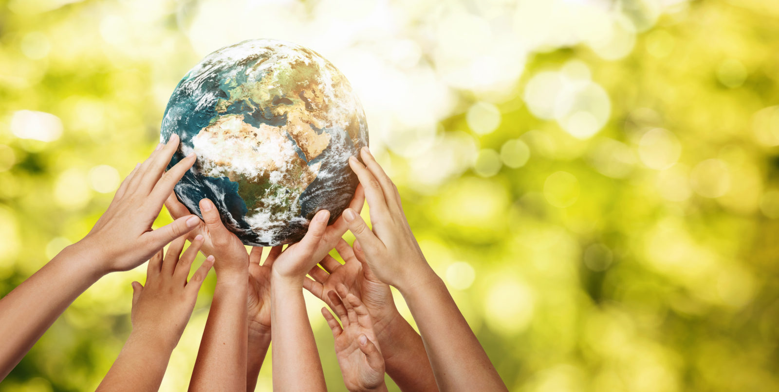 A picture of hands holding the earth for Earth Day 2021 | LCA
