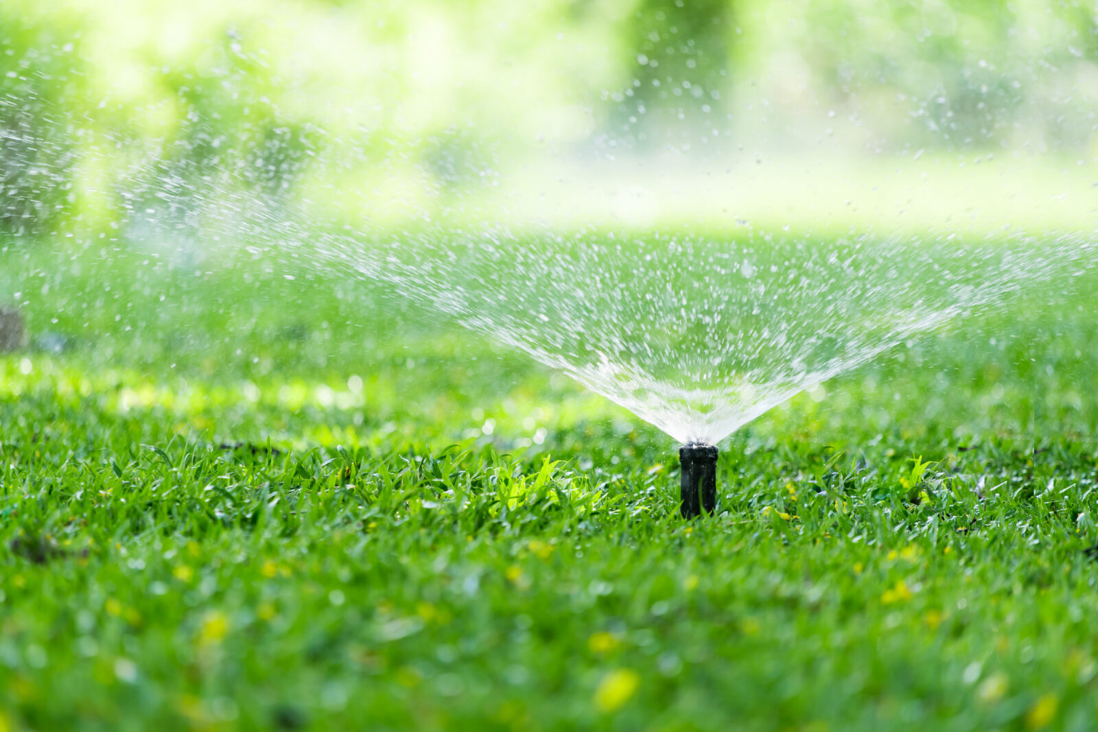 An image of a lawn sprinkler to illustrate a post on smart irrigation for LCA.