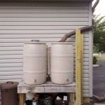 Using rain barrels to collect water for irrigation can save hundreds — if not thousands — of gallons of water a season.